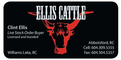 Ellis Cattle