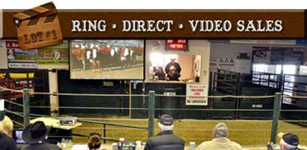 ring direct video